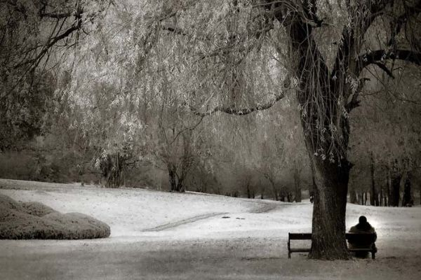woman_sitting_on_a_bench_in_the_park
